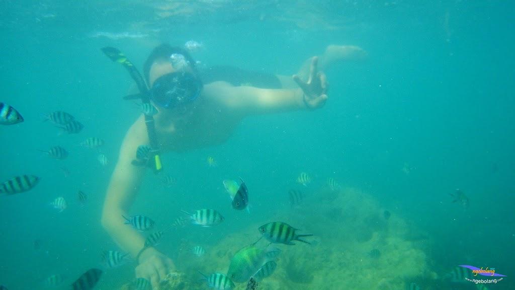 family trip pulau pari 090716 Pentax 13