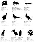 Animales de Patrulla V