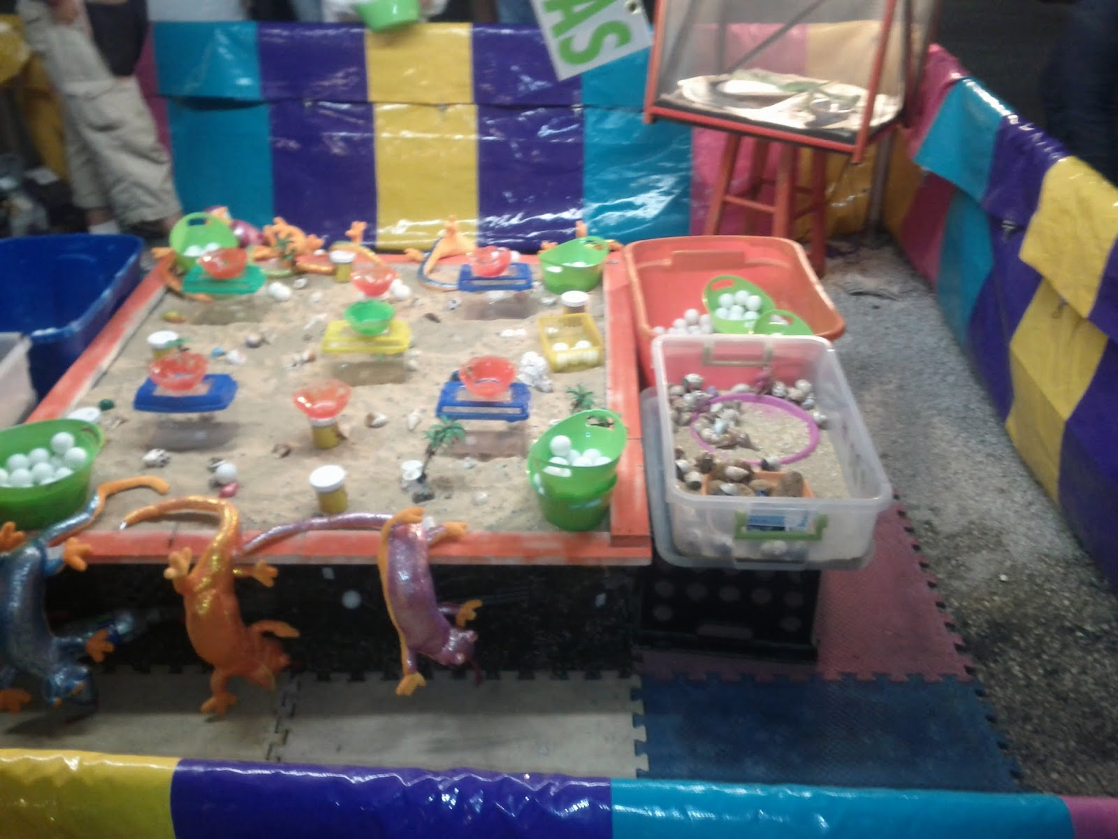 Fort Bend County Fair 2012 - IMG_20121006_202014.jpg