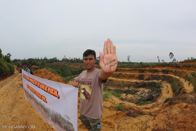 Activist staging a protest against a palm oil company in Indonesia. Photo: Rhett A. Butler / Mongabay