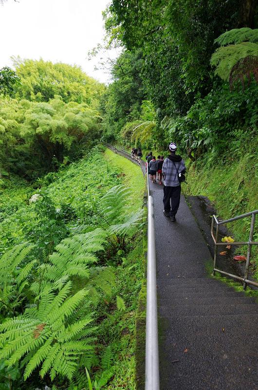 06-23-13 Big Island Waterfalls, Travel to Kauai - IMGP8826.JPG