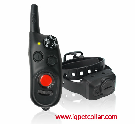 Dog e-collar