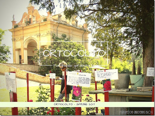 Back to Ortocolto! - 2° parte - by tyziana