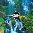 Live Wallpapers Gif Animated icon