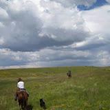 Horses - 1555280_584965021573092_1572885067_n.jpg