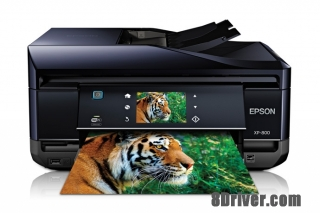 download Epson Expression Premium XP-800 printer's driver