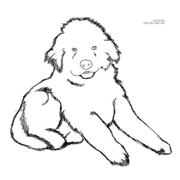 Fluffy Baby Puppies Coloring Pages Coloring Pages