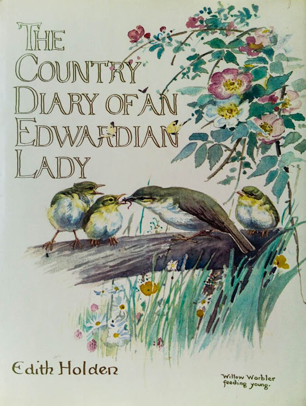 Edith Holden country diary of an edwardian lady