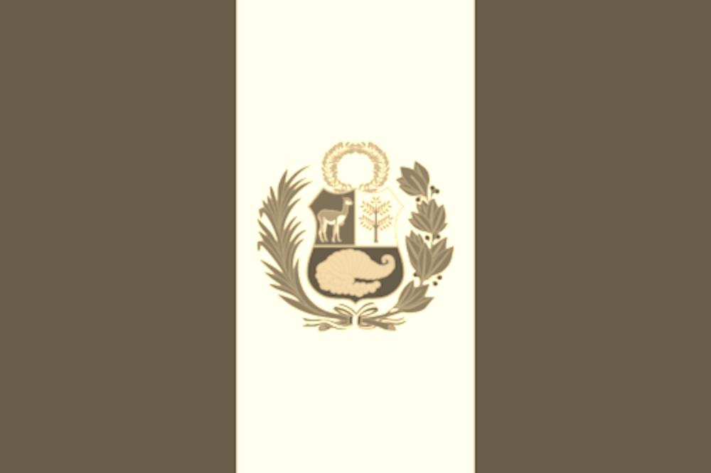 파일:페루 국기.png