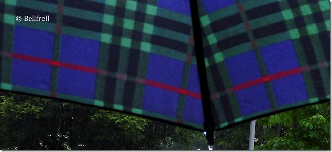 Unterm Schirm am Heimweg