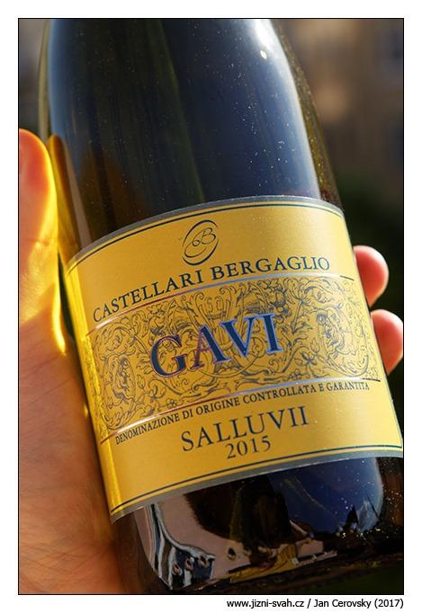 [Castellari-Bergaglio-Gavi-Salluvii-2015%5B3%5D]