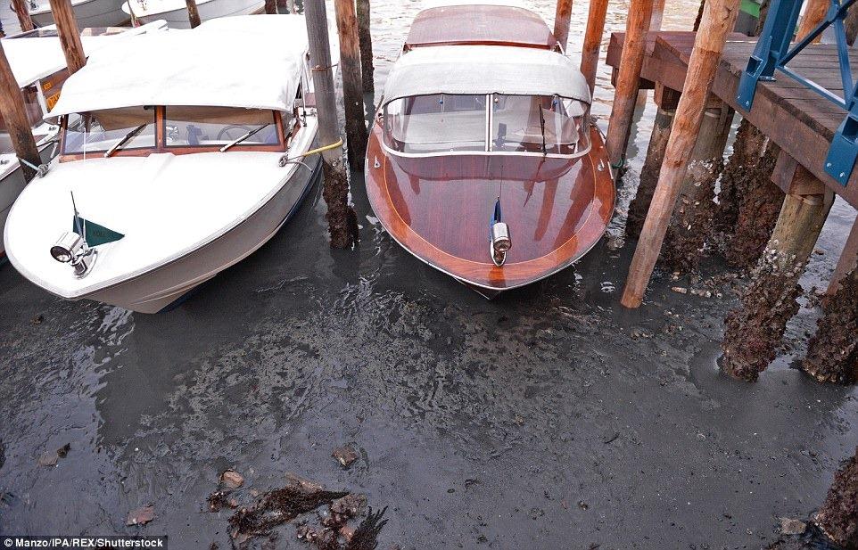 venice-low-tide-3