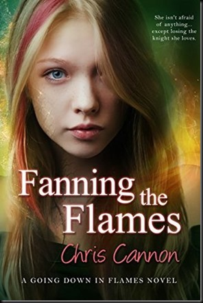 Fanning The Flames  (Going Down in Flames #4)