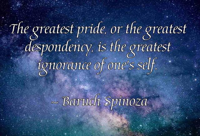 Baruch Spinoza motivational  Quotes