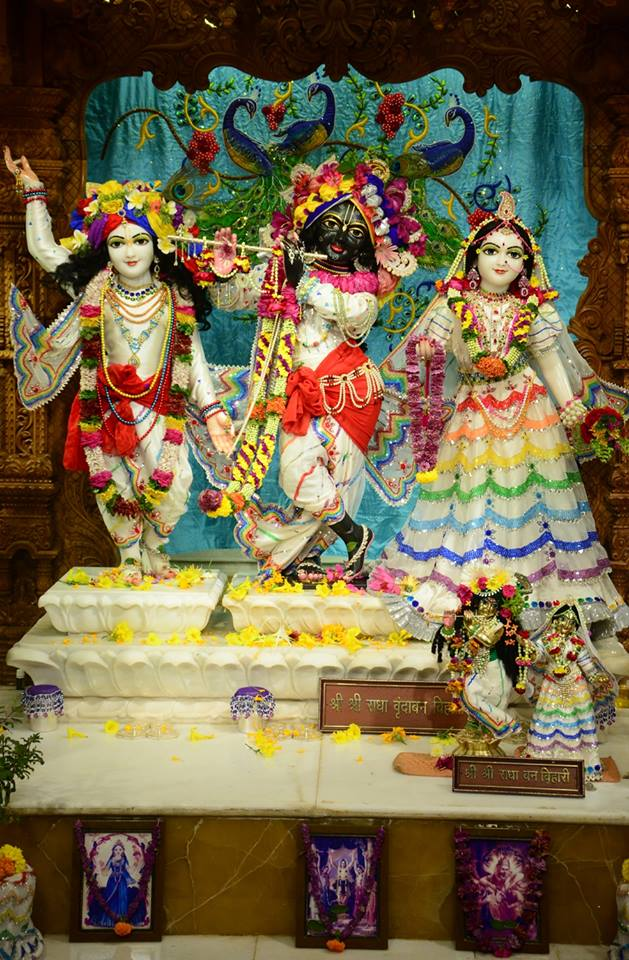 ISKCON GEV Deity Darshan 03 jan 2017 (3)