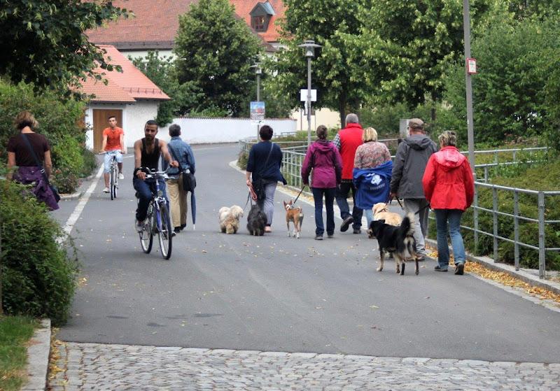 On Tour in Waldsassen: 14. Juli 2015 - Waldsassen%2B%252821%2529.jpg