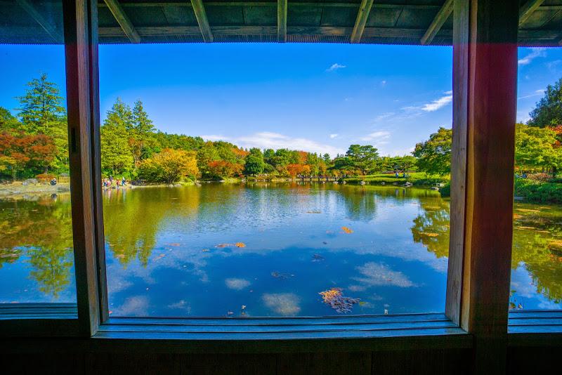 昭和記念公園 日本庭園 紅葉 写真2