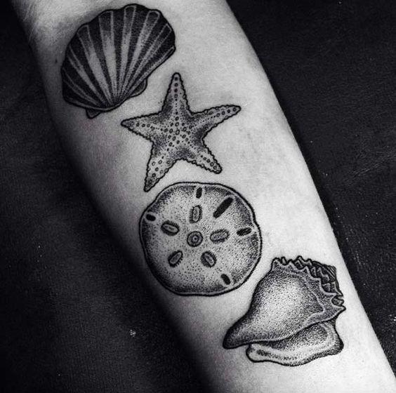 dotwork_variadas_conchas_antebraço_tatuagem
