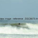 _DSC8875.thumb.jpg