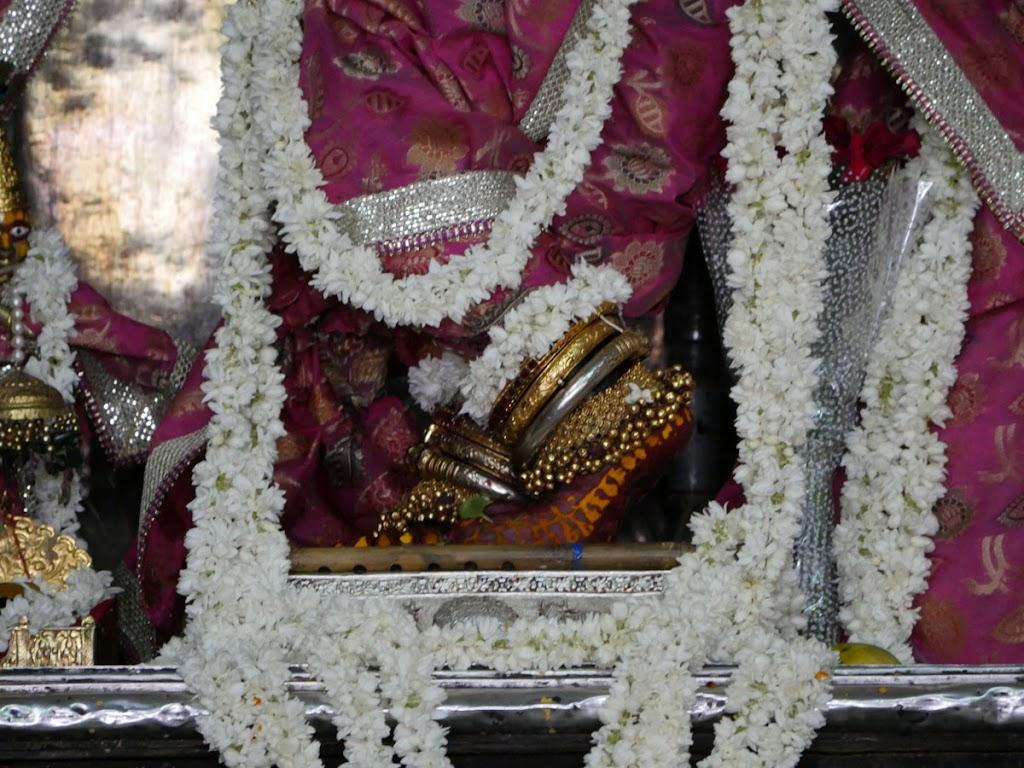 Radha Govind Devji Deity Darshan 14 June  2016 (5)