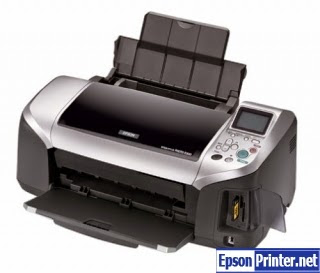 How to reset Epson R300 printer