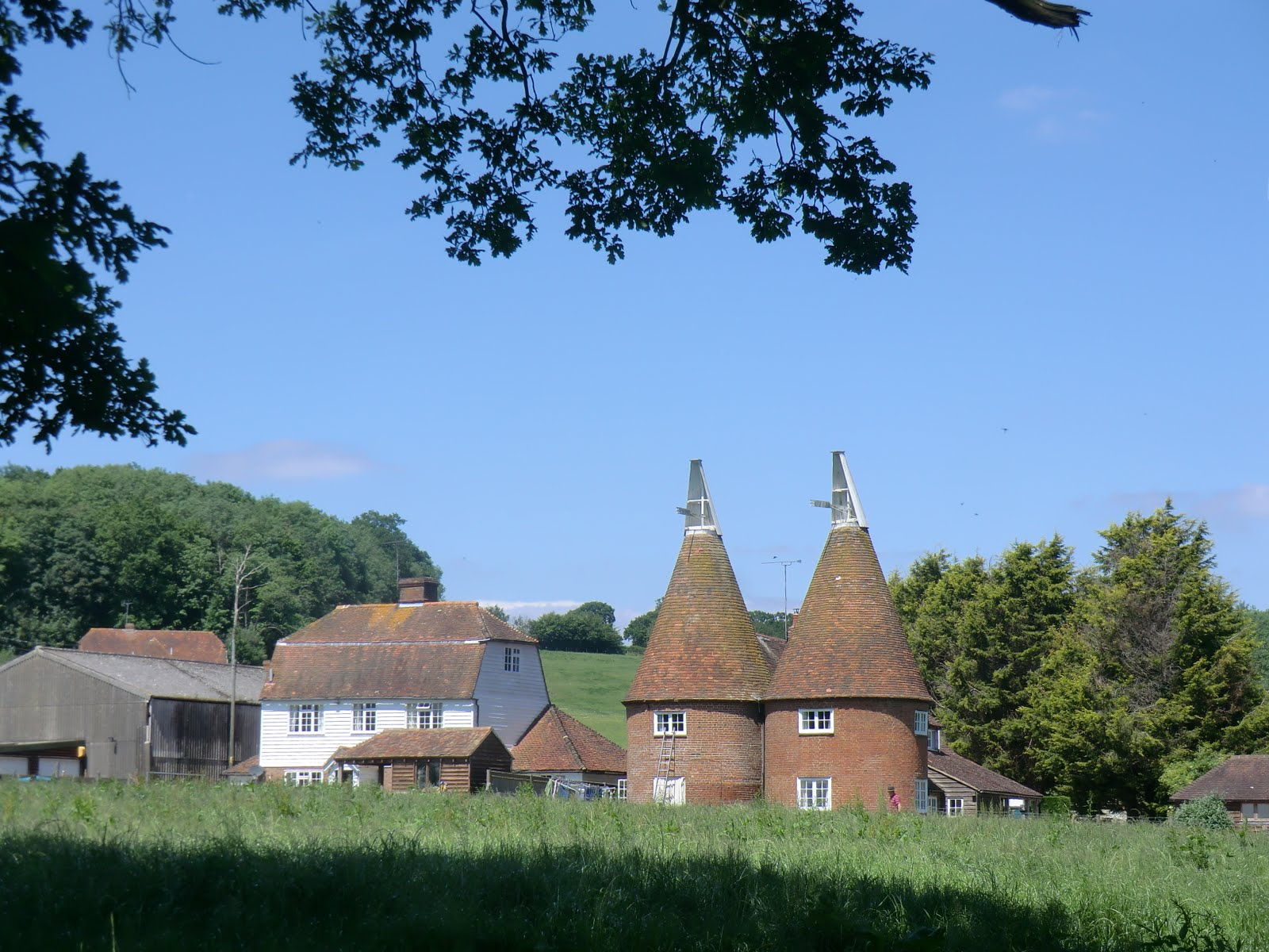 CIMG1709 Oast houses on the HWLT