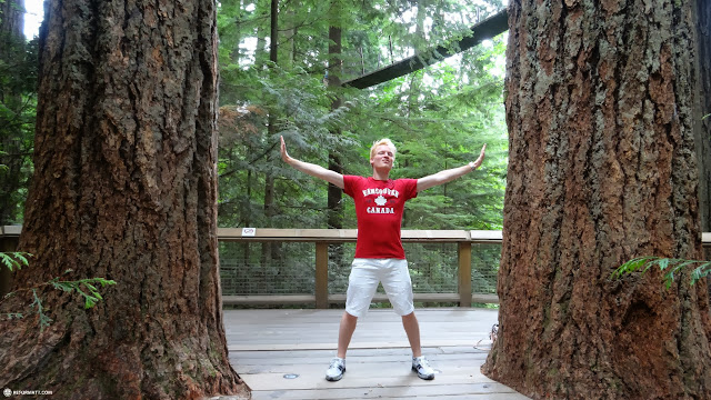 between two giant trees at the Capilano Suspension Bridge in North Vancouver, British Columbia, Canada