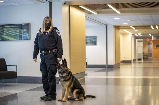 Geisinger Medical Center adds K-9 security team