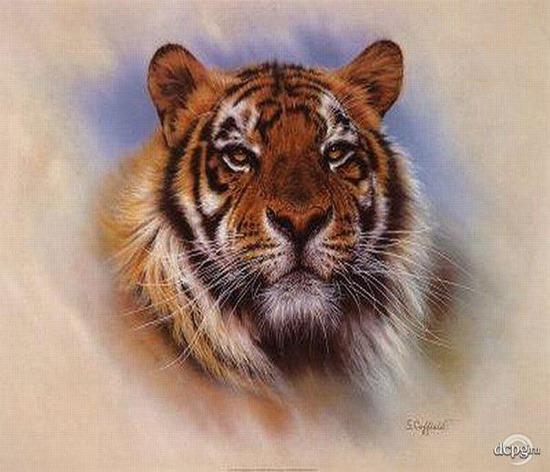 [tigre+4+2%5B2%5D]