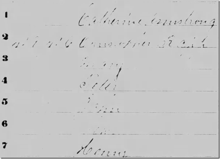Image sample from 1860 census from Fold3