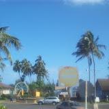 Hawaii Day 3 - 100_6933.JPG