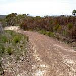 Mackerel service trail (29852)