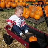Pumpkin Patch - 114_6556.JPG