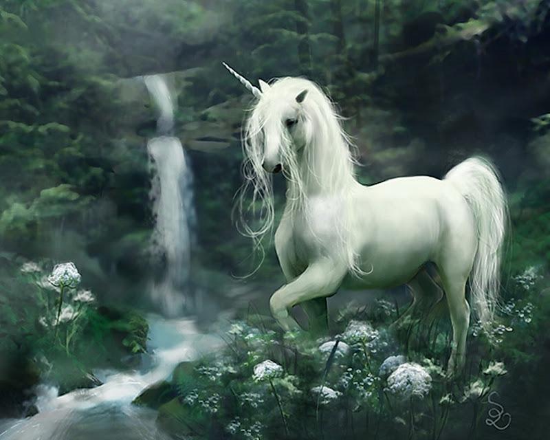 Unfailing Guardian For You, Spirit Companion 4