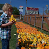 Pumpkin Patch 2015 - 100_0432.JPG