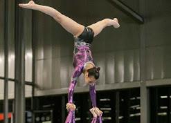 Han Balk Fantastic Gymnastics 2015-8339.jpg