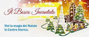 Vivi il tuo Natale nel cuore di Forlì!