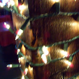 Christmastime - 116_6379.JPG