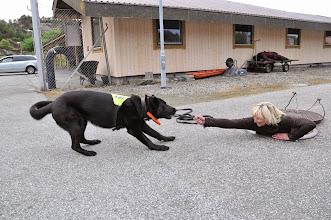 Photo: Vilma har funnet June under et kumlokk på ResQ og får belønningen sin.