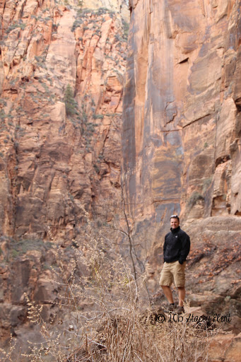 Zion National Park. From Through the Eyes of an Educator: National Parks