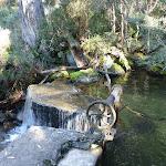 Thredbo Weir (275396)