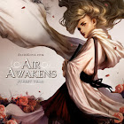 Air Awakens Street Team