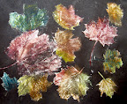 Fall Leaves by Angelina