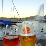 cheers in Geneva in Geneva, Geneva, Switzerland