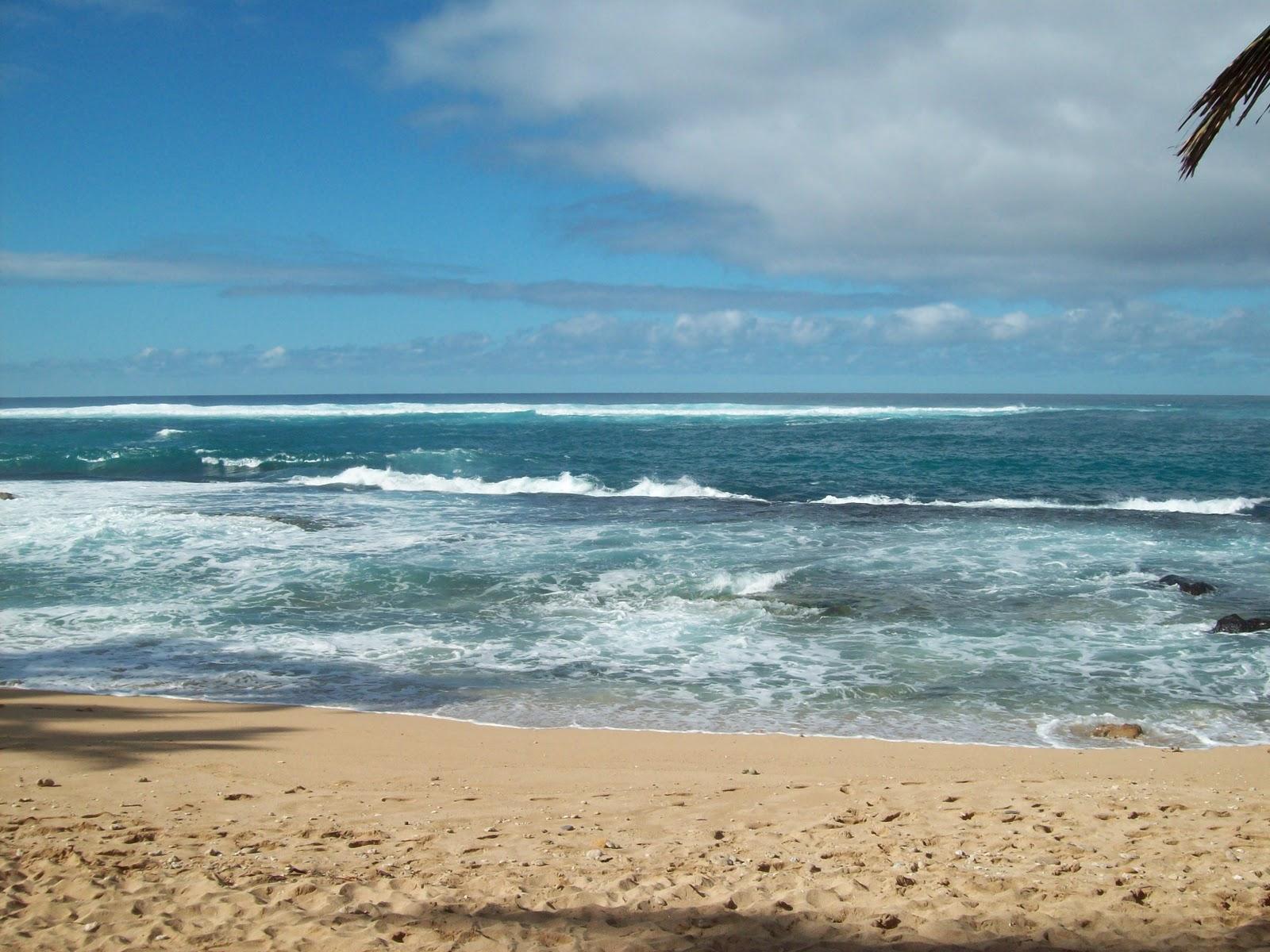 Hawaii Day 8 - 114_2219.JPG
