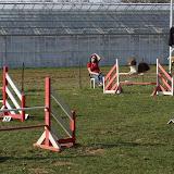 Concours agility de Fontenay le Vicomte le 14 avril 2013