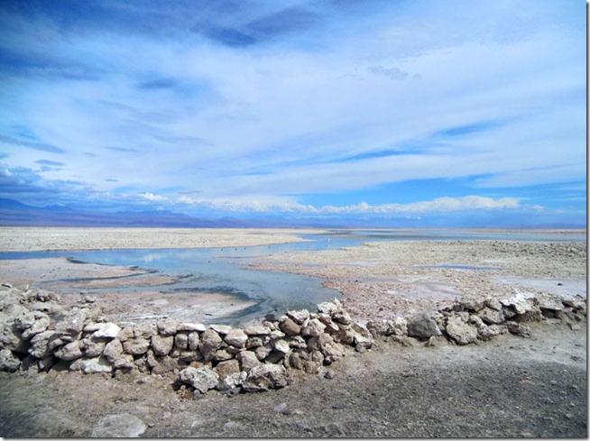 Laguna-Chaxa-Atacama