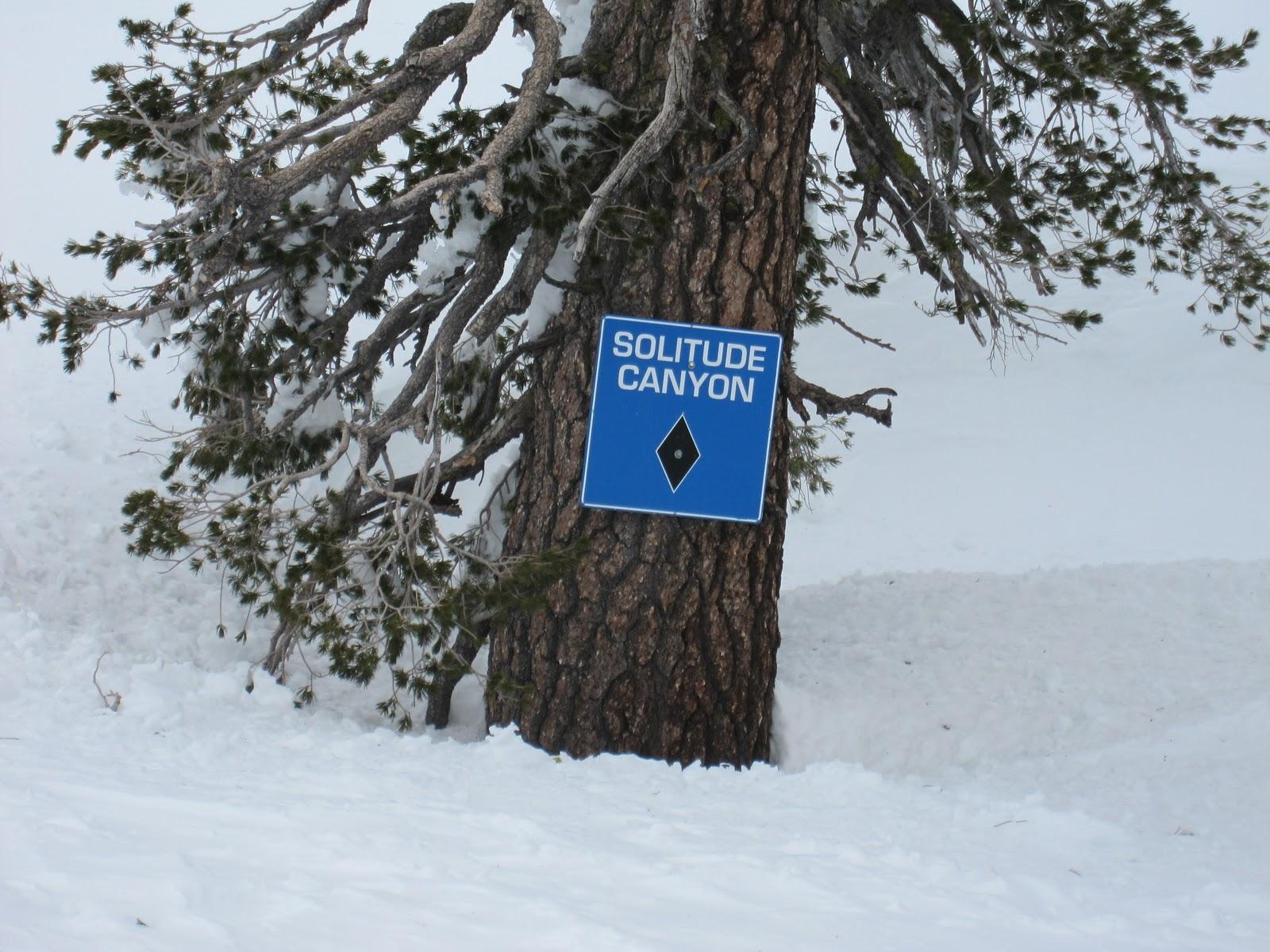 Snow Skiing Online