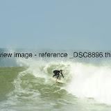 _DSC8896.thumb.jpg