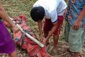 Tragis! Pembunuhan Terhadap Anak Dibawah Umur Kembali Terjadi, Pemuda Nias Mengutuk Keras